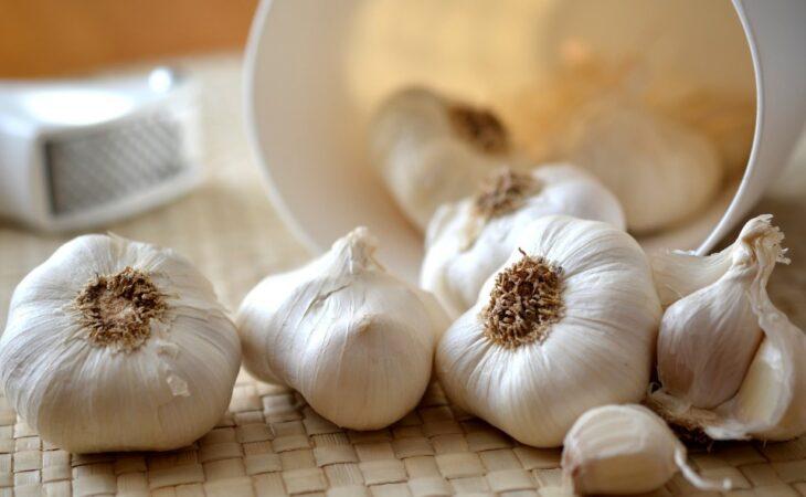 Estudo da UFRN mostra benefícios da cebola e do alho contra a diabetes