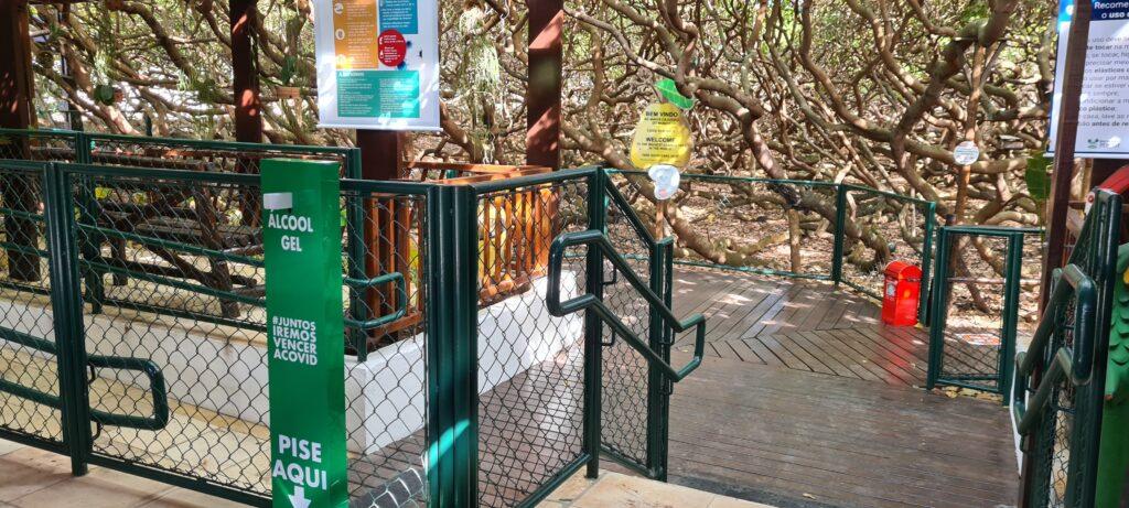 Parque das Dunas e Cajueiro de Pirangi reabrem para visitação